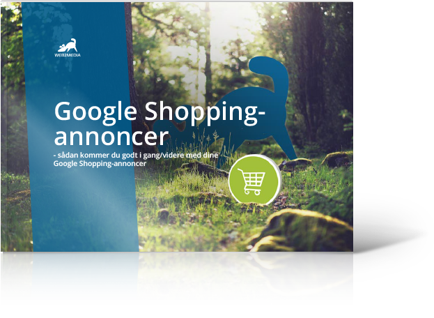 googleshopping-guide-illustration.png