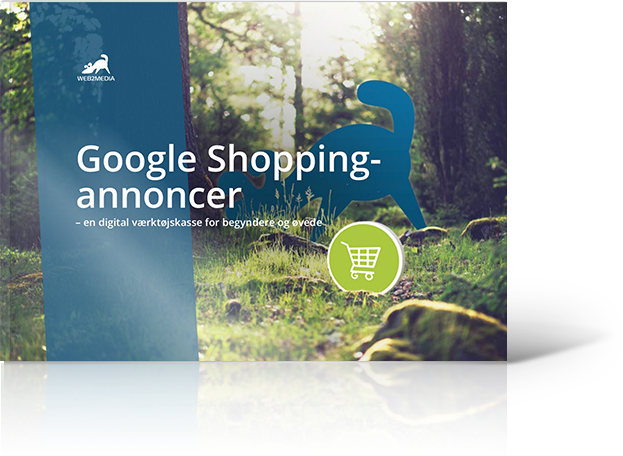 Google Shopping-download-cta-guide-img